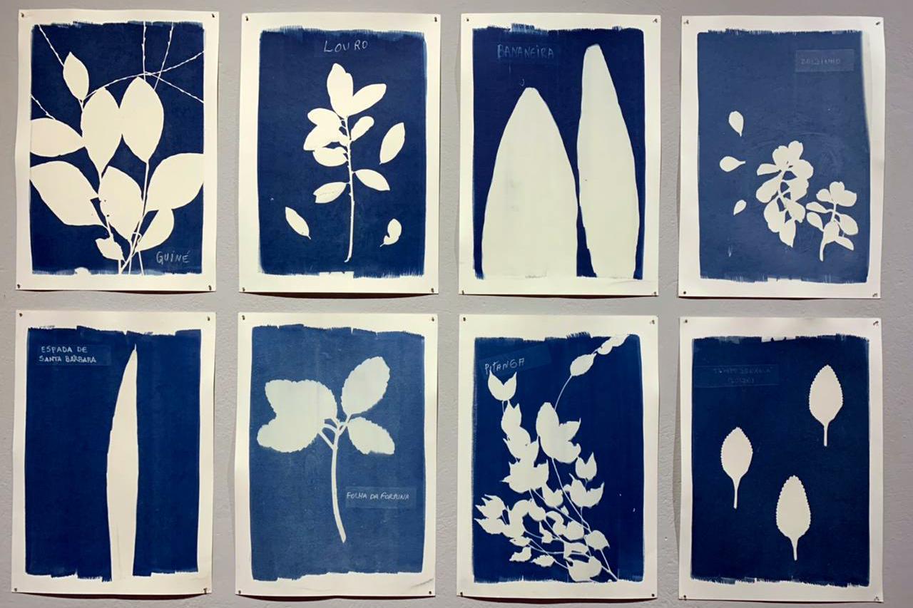 Ways of Healing (Ancestral Herbarium)