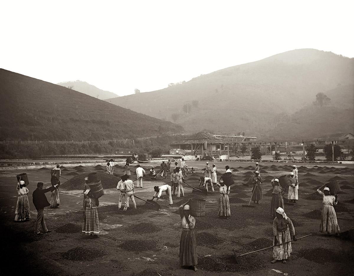 Escravos em terreiro de uma fazenda de café
